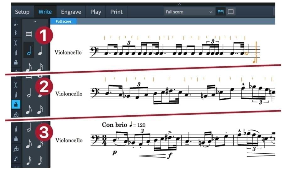 Steinberg Dorico Professional Notation/Engraving Software